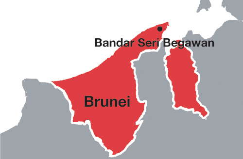 brunei demographic trends The combined population of the southeast asian countries of brunei, cambodia,   contemporary demographic changes in southeast asia with primary attention.