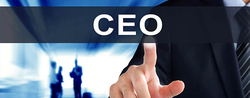 Joint CEO/Chairman Conundrum Puzzles Us Shareholders