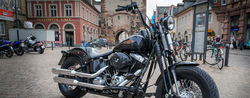 Harley-Davidson Crashes Into Trade Policy