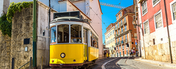 Portugal: Bright Spot