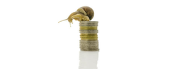 Money Market Funds: Re-Weight And See