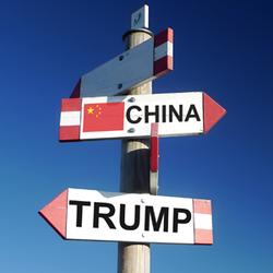 Old Essay Shines Light On Trump's Trade Rep