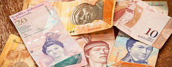 VENEZUELA: FREE-FLOATING CURRENCY UNLIKELY TO STAVE OFF DEFAULT