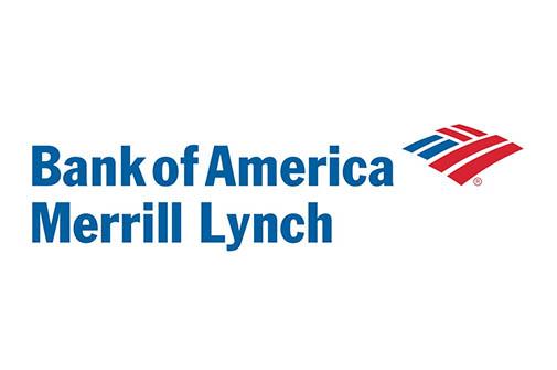 BOA Merrill Lynch Logo